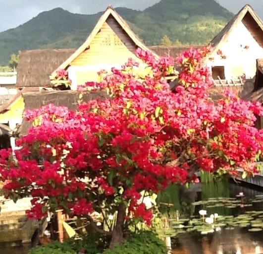 5 Tempat Liburan Terbaik di Jawa Barat dan Jakarta