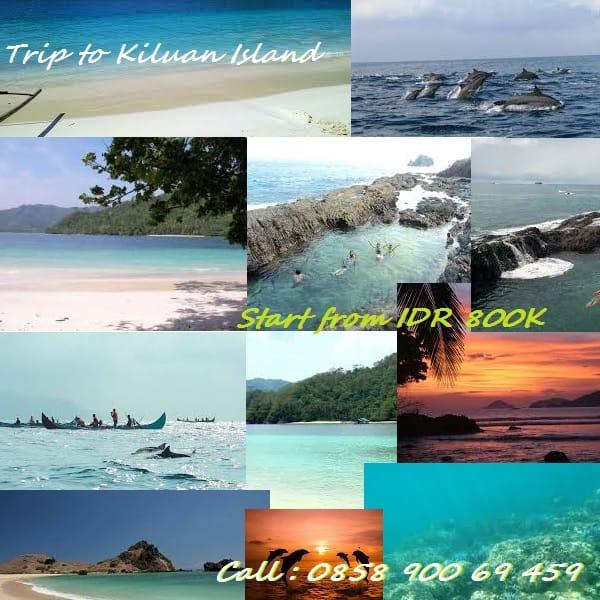 Paket Wisata Hemat Teluk Kiluan Lampung