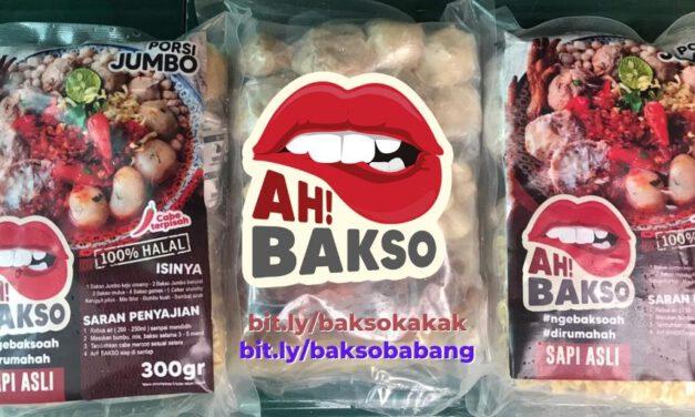 Jual Bakso Frozen Segar Halal Non-MSG di Jakarta Selatan